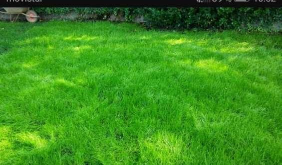 Espacio jardines verdes