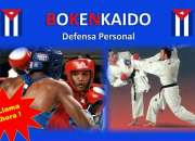 Curso de defensa personal online con boxeo karate aikido